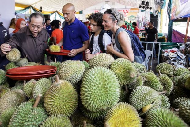 Image result for makan durian di raub